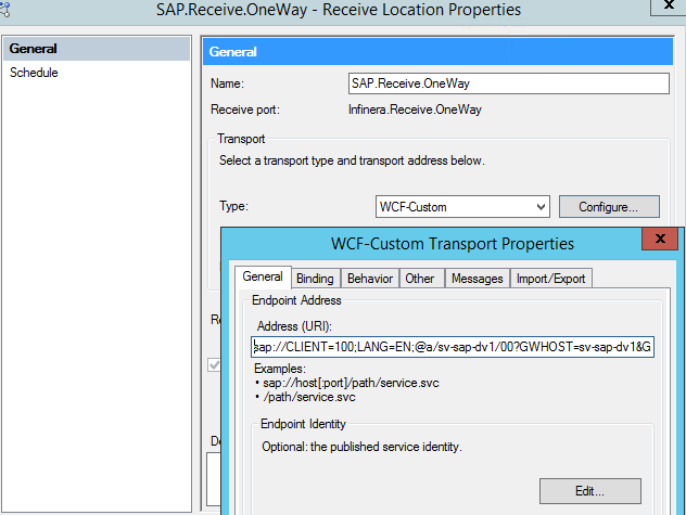 WCF-SAP Adapter vs WCF Custom Adapter with SAP bindings | Hooking